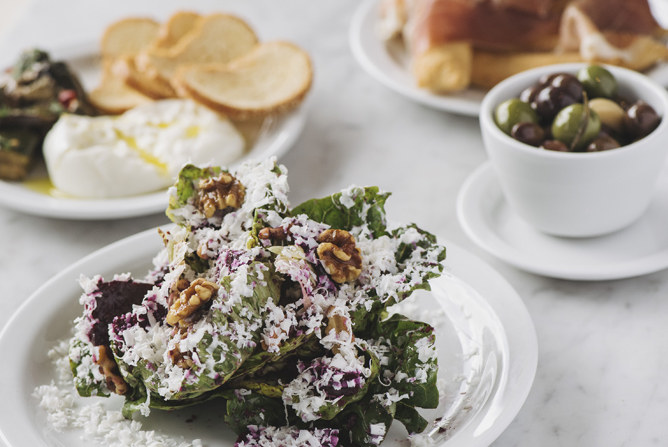 Appetizers: chicory salad, burrata, olives
